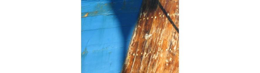 vernis, lasures et huiles pour les bateaux en bois